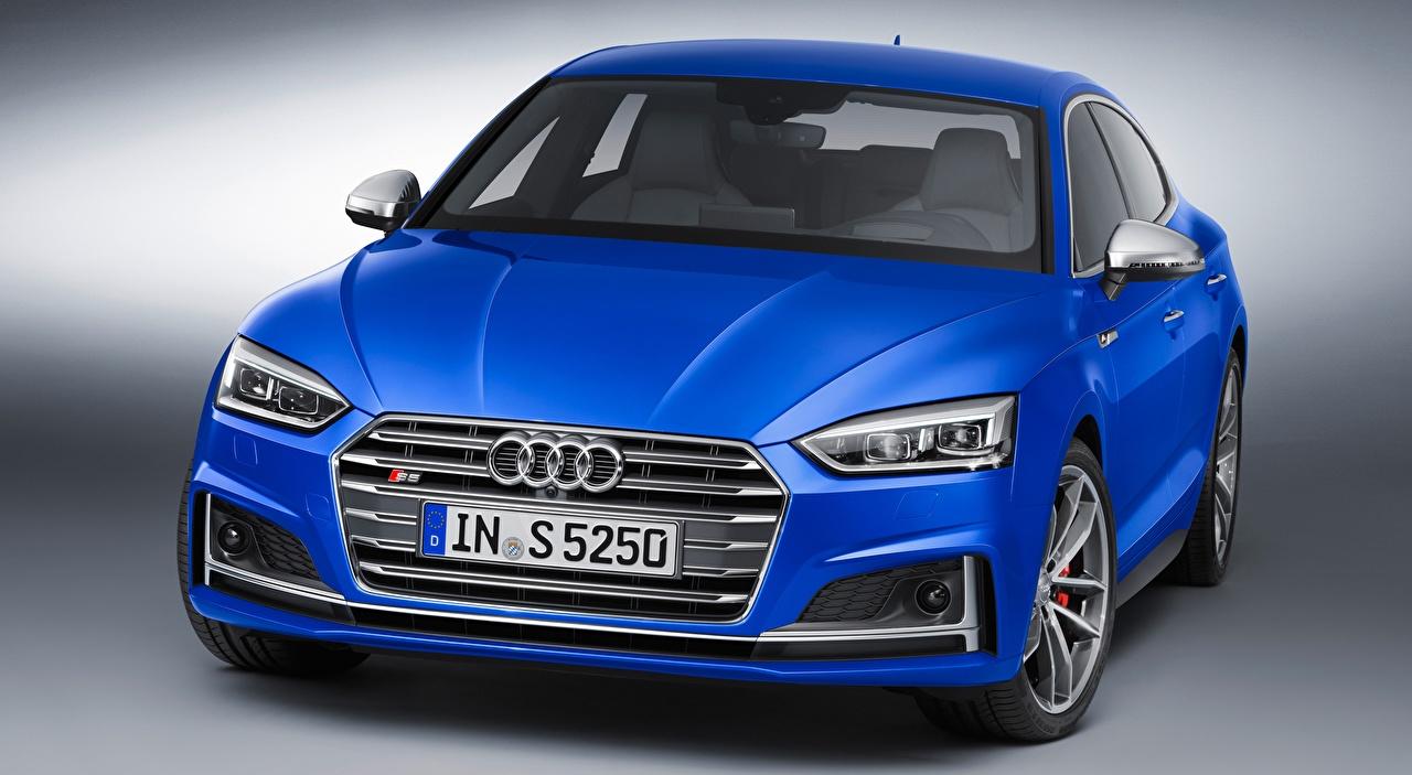 Обои для рабочего стола Ауди fastback, S5, Sportback, 2016 Синий Спереди Автомобили Серый фон Audi синяя синие синих авто машины машина автомобиль сером фоне