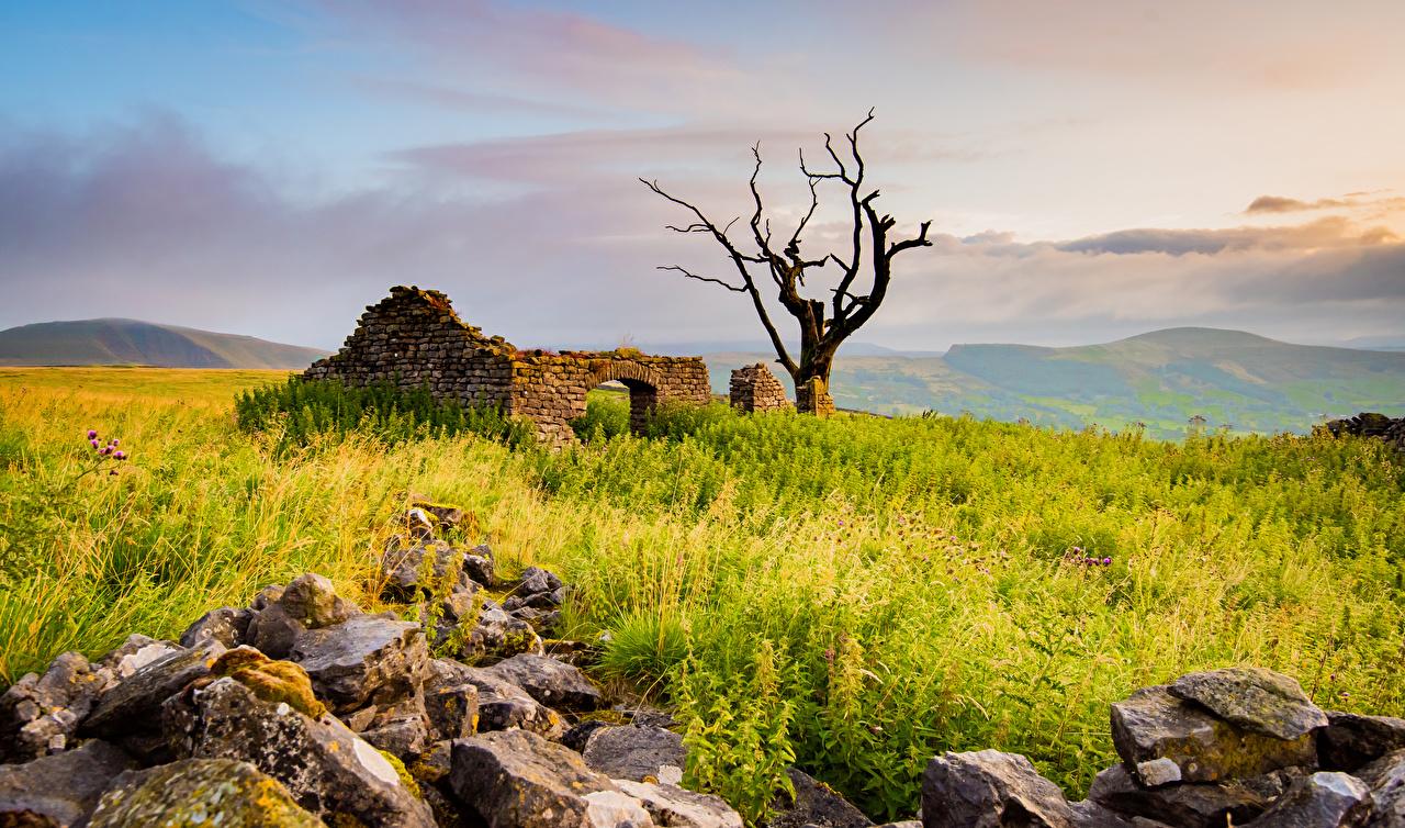 Фото Англия Peak District Природа Развалины Камни дерево Руины Камень дерева Деревья деревьев