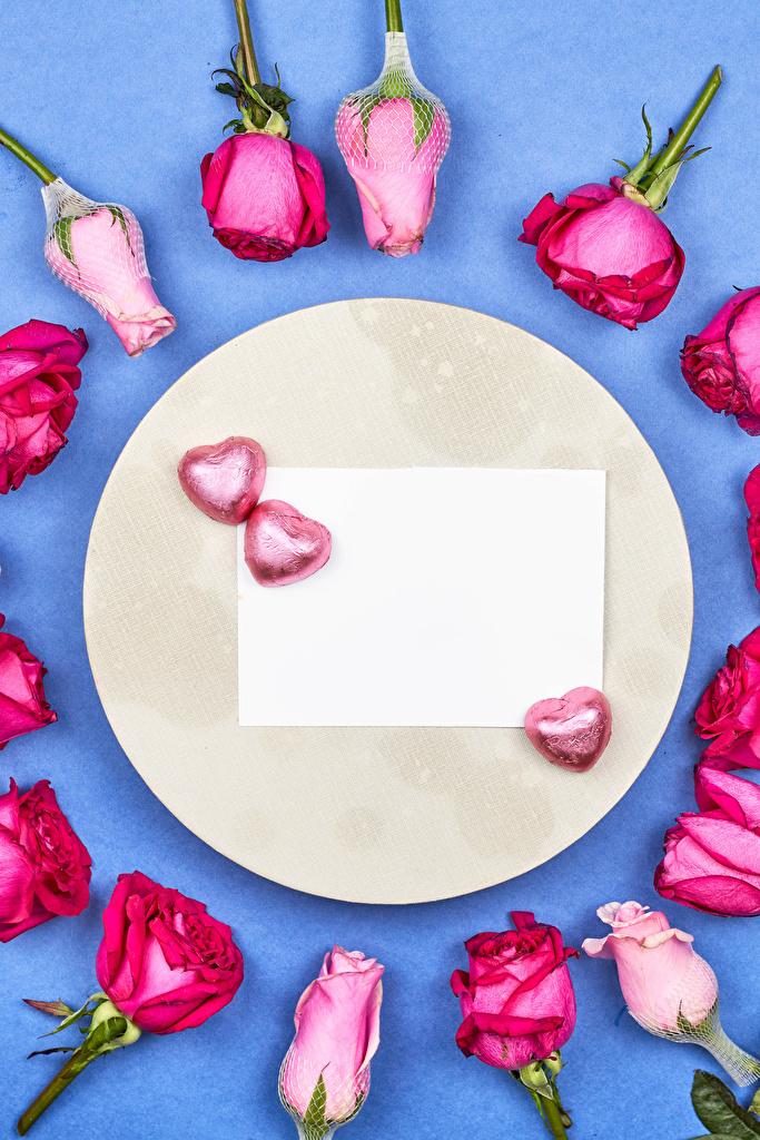Фотография День всех влюблённых Сердце Лист бумаги Розы Конфеты Цветы Шаблон поздравительной открытки  для мобильного телефона День святого Валентина серце сердца сердечко роза цветок