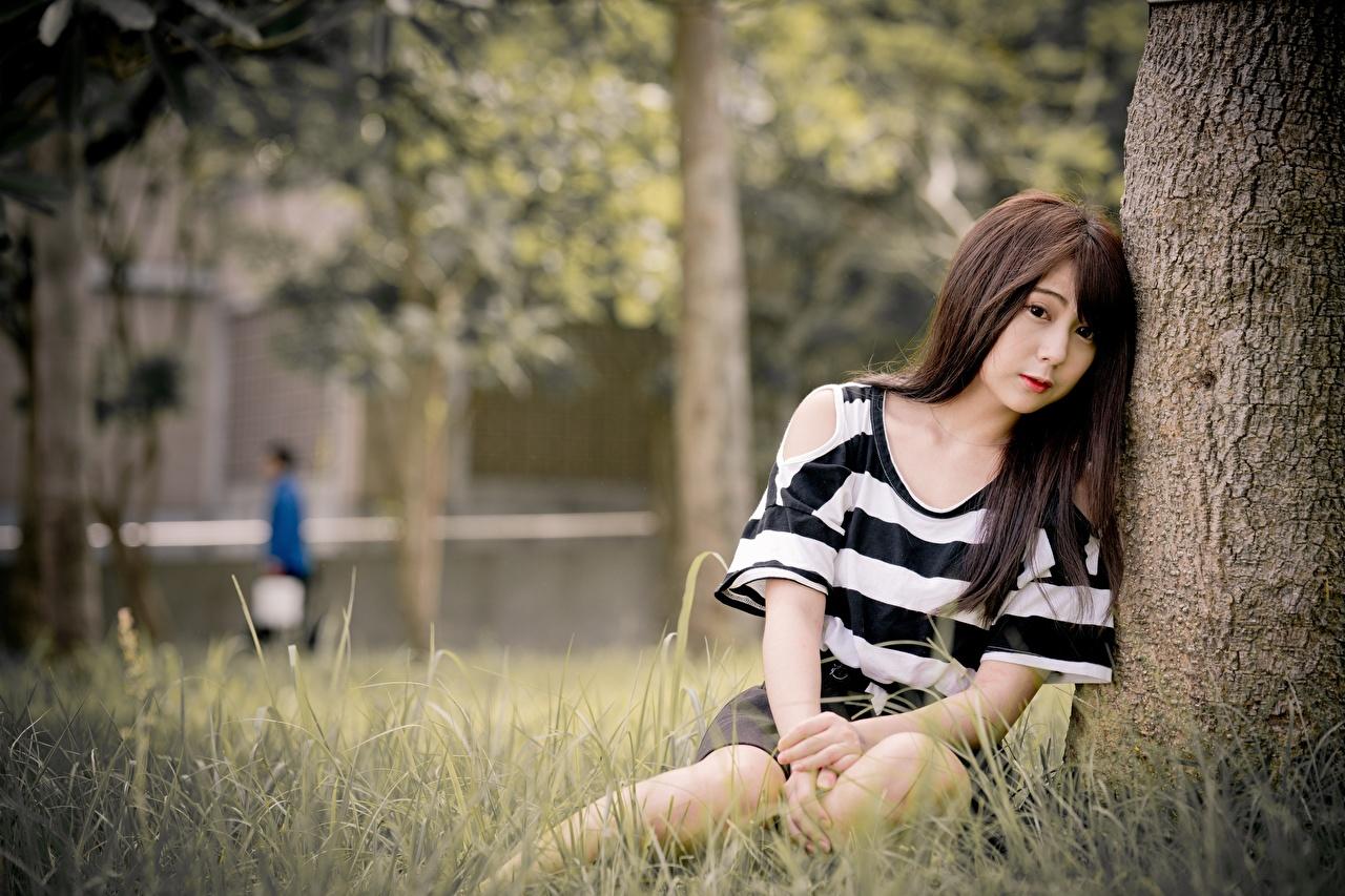 Обои для рабочего стола Шатенка Размытый фон Девушки азиатки Трава Сидит шатенки боке девушка молодая женщина молодые женщины Азиаты азиатка сидя траве сидящие