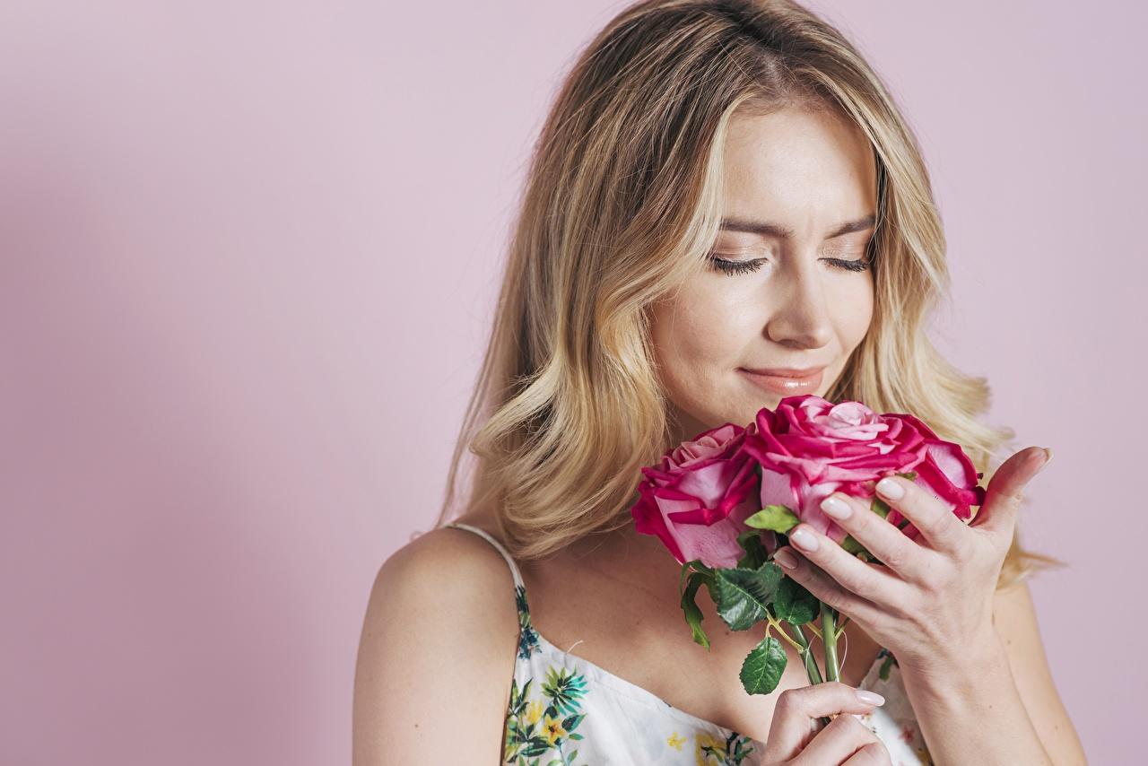 Картинка блондинки Букеты роза Нюхает молодая женщина Цветы Цветной фон Блондинка блондинок букет Розы нюхают девушка Девушки молодые женщины цветок