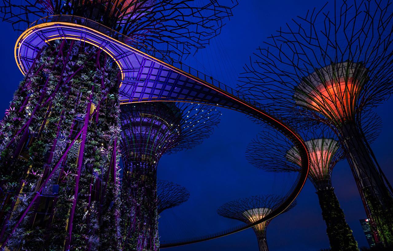Картинка Сингапур Gardens by the Bay Природа Сады ночью Дизайн Ночь в ночи Ночные дизайна