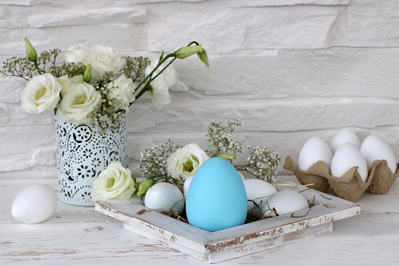 Фотографии Пасха яйцо Голубой цветок Лизантус Ваза Праздники яиц Яйца яйцами голубая голубые голубых Цветы Эустома вазе вазы