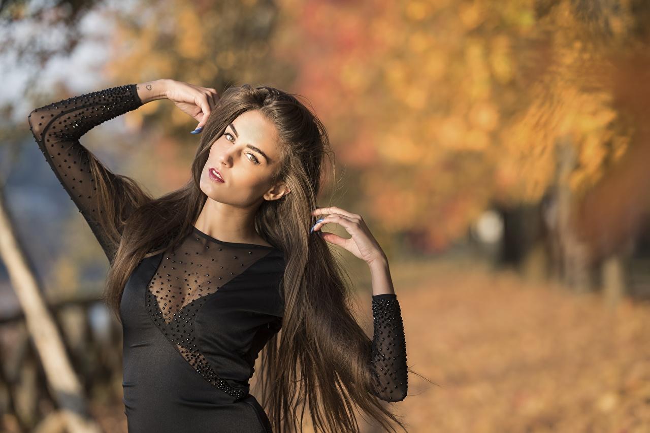 Фотографии Размытый фон позирует волос молодая женщина Руки боке Поза Волосы Девушки девушка молодые женщины рука