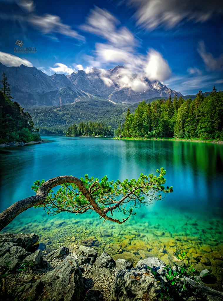 Фото Германия Eibsee Горы Природа Озеро ветка Камни  для мобильного телефона гора Ветки ветвь Камень на ветке