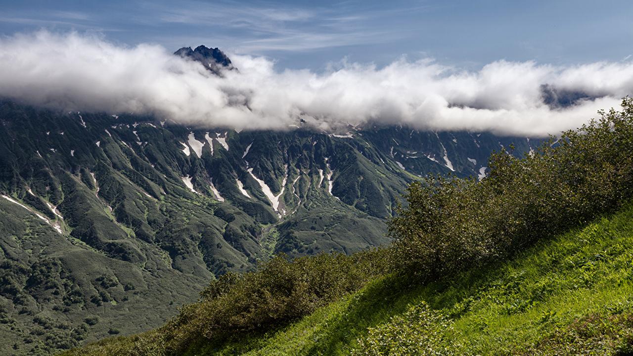 Фотографии Камчатка Россия Горы Природа Облака кустов гора Кусты облако облачно