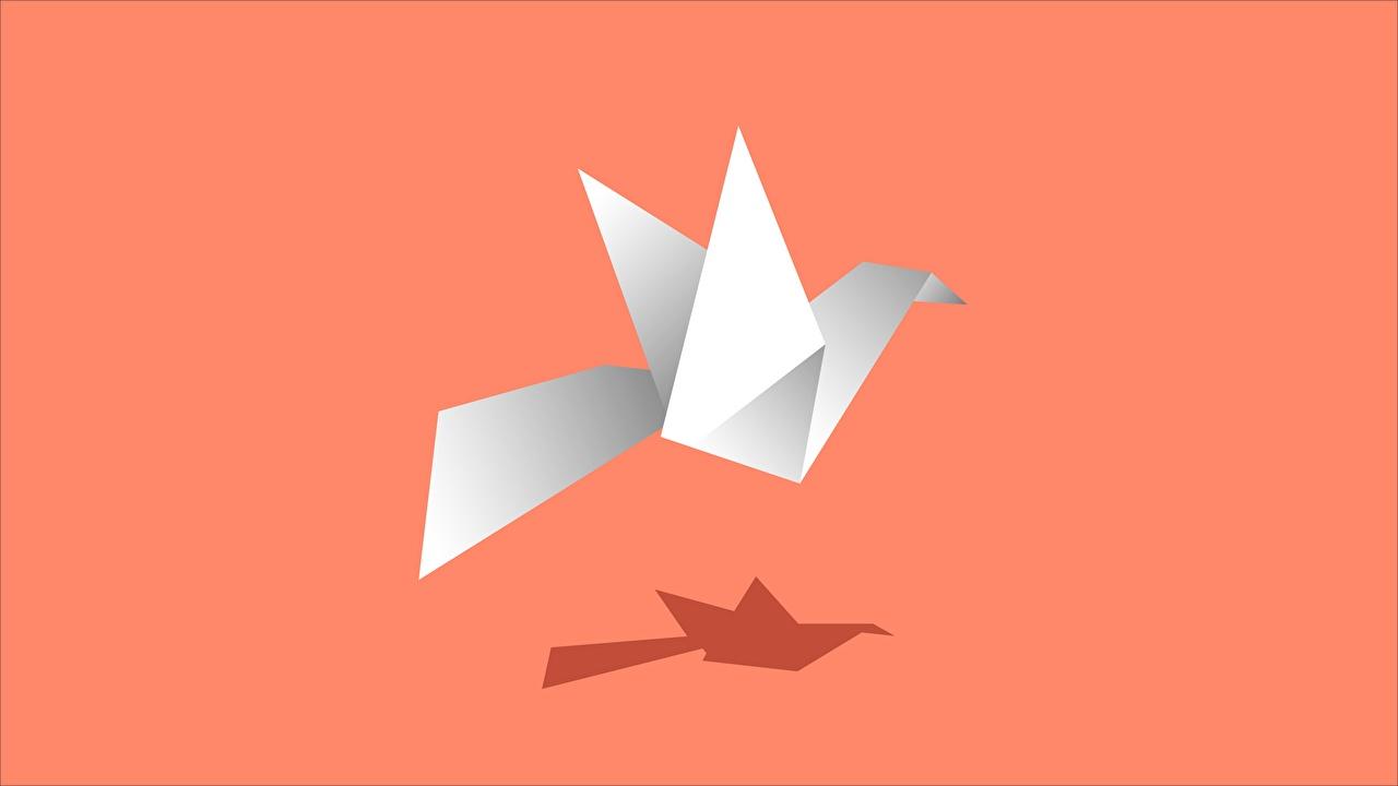 Картинки птица Тень Оригами бумаги Цветной фон Птицы бумаге Бумага