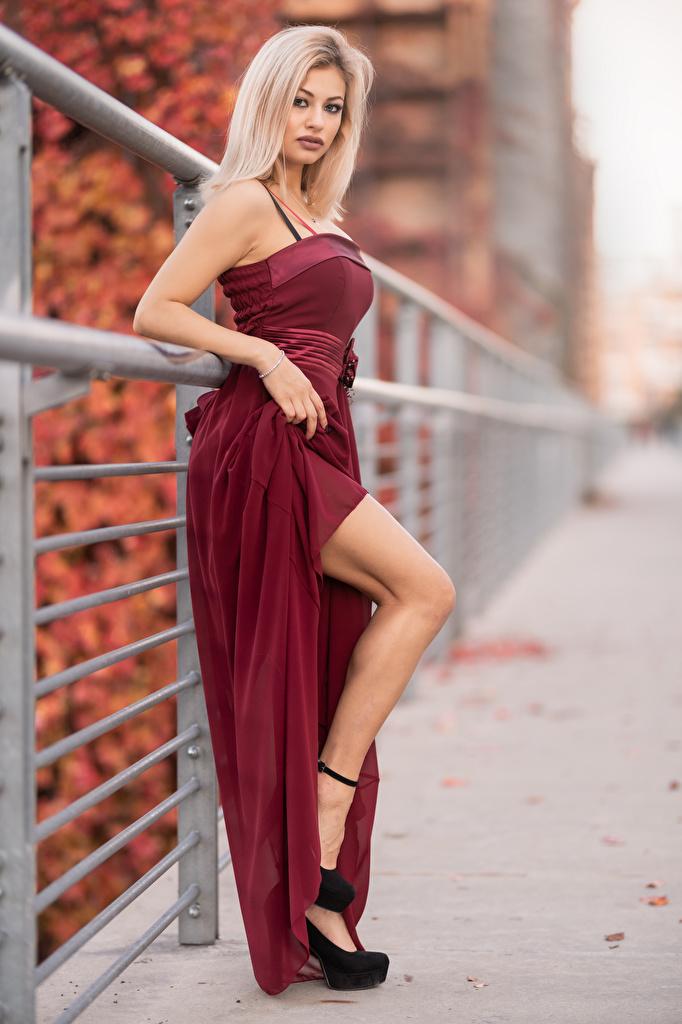 Фотография Блондинка боке Девушки Ноги Взгляд Платье  для мобильного телефона блондинки блондинок Размытый фон девушка молодая женщина молодые женщины ног смотрит смотрят платья