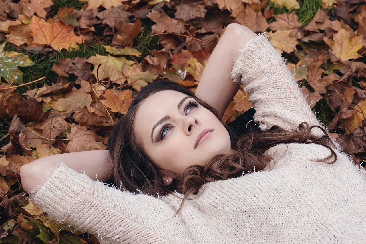 Фото Листья Шатенка Красивые Осень Девушки Свитер Взгляд