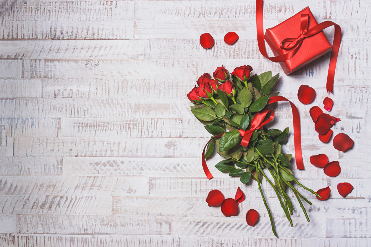Картинки День святого Валентина Букеты роза Красный лепестков Цветы Подарки бант Доски День всех влюблённых букет Розы красная красные красных Лепестки цветок подарок подарков Бантик бантики