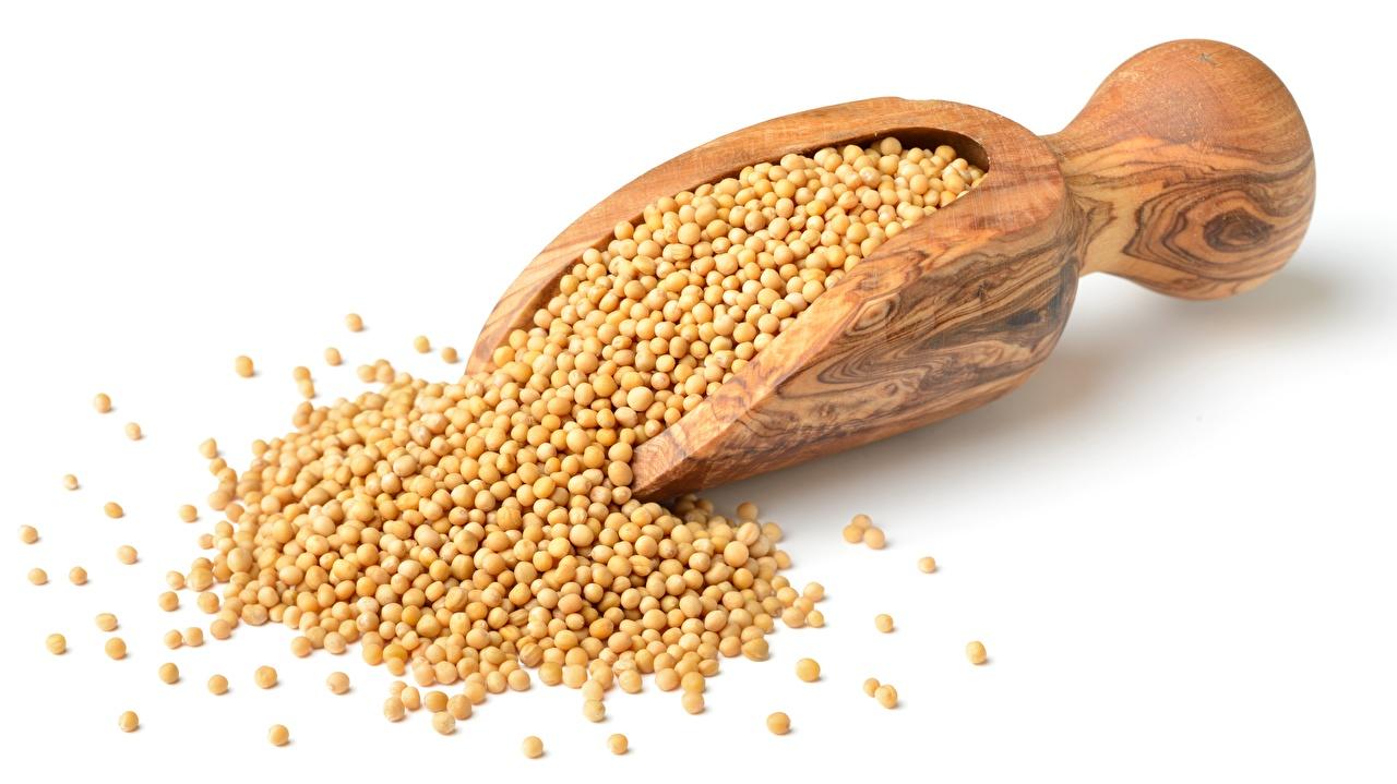 Обои для рабочего стола peas Зерна из дерева Продукты питания белом фоне зерно Еда Пища Деревянный Белый фон белым фоном