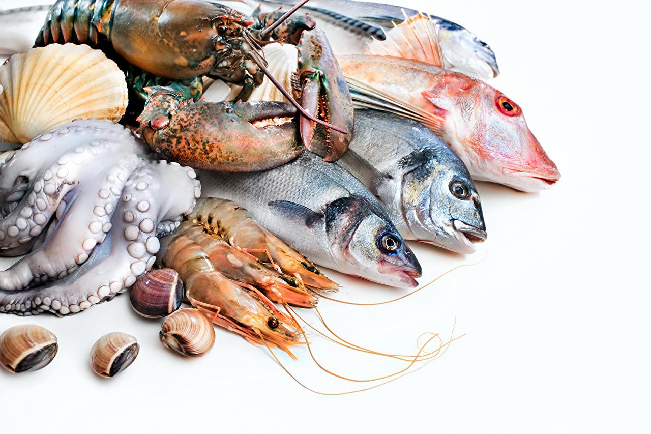 Обои для рабочего стола Омары Рыба Ракушки Креветки Продукты питания Морепродукты Еда Пища