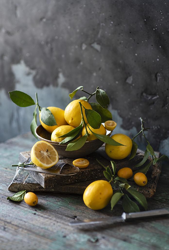 Фотография Лимоны ветвь Продукты питания  для мобильного телефона Еда Пища Ветки ветка на ветке