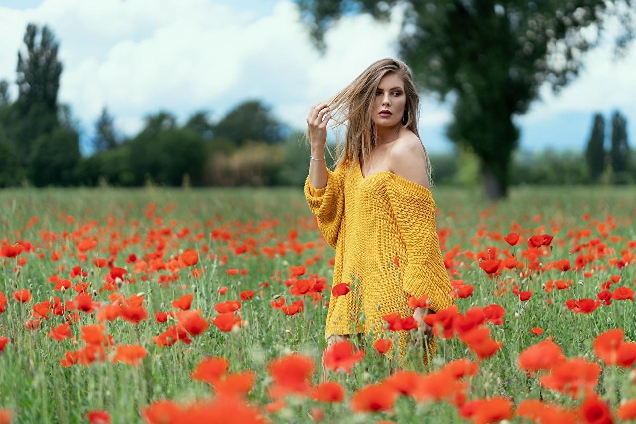 Картинка Размытый фон позирует Девушки мак Цветы боке Поза девушка молодые женщины молодая женщина Маки цветок