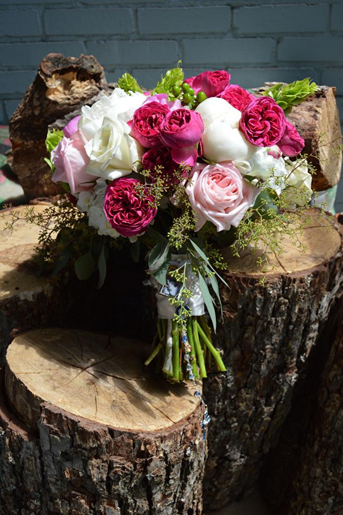 Обои для рабочего стола Букеты роза бревно цветок  для мобильного телефона букет Розы Бревна Цветы
