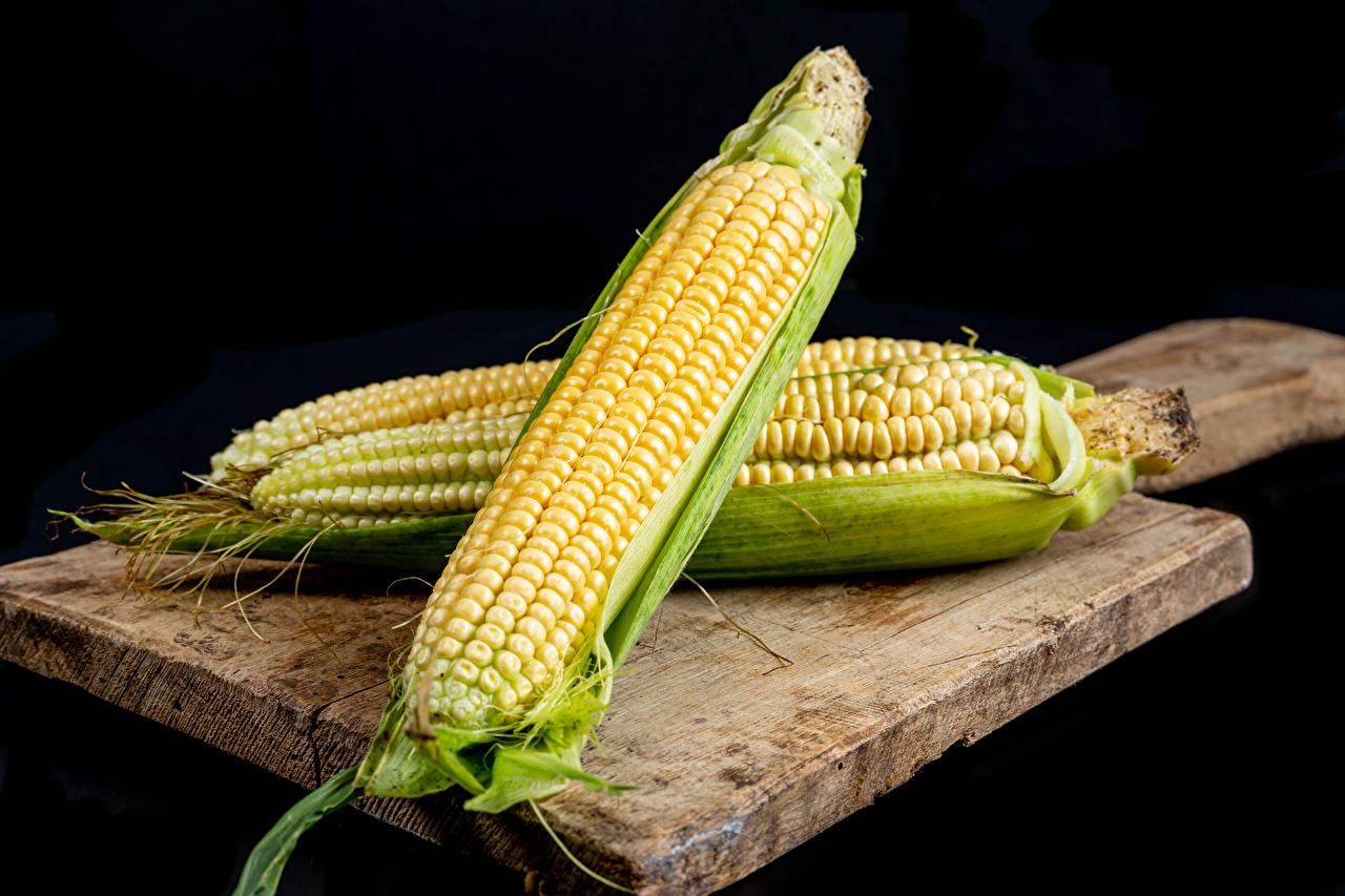 Обои для рабочего стола Двое Кукуруза Еда разделочной доске Черный фон 2 два две вдвоем Пища Продукты питания Разделочная доска на черном фоне
