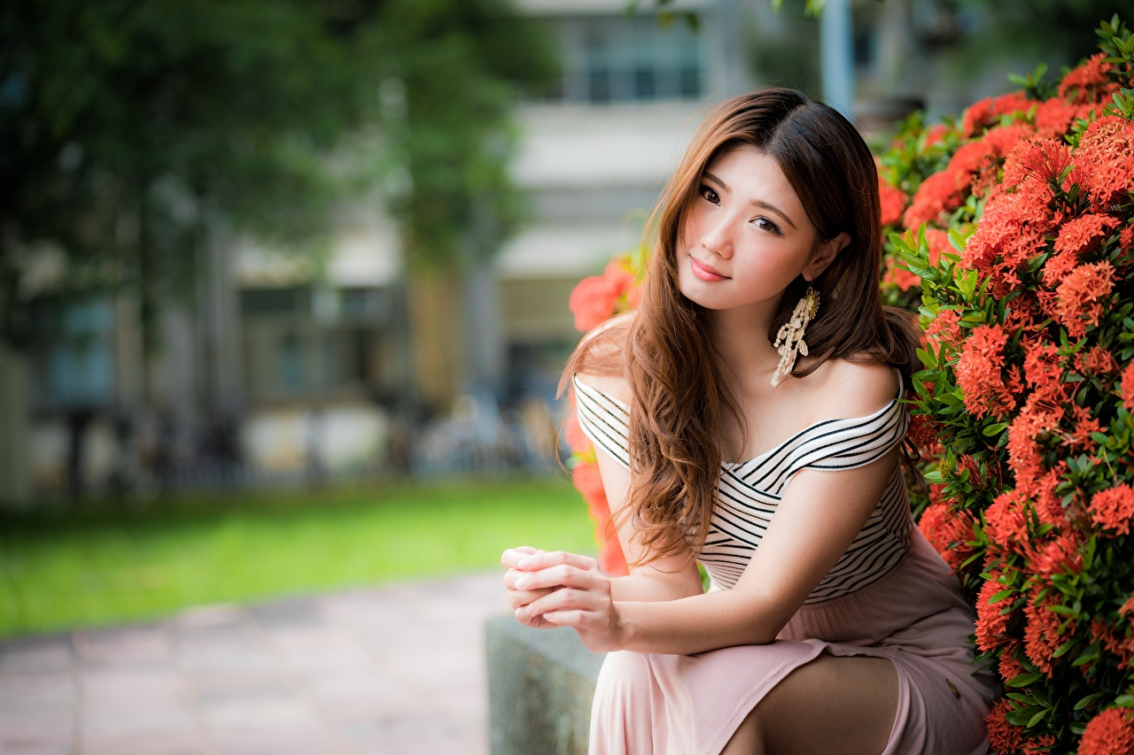 Картинка Шатенка боке Красивые девушка Азиаты Руки Сидит Взгляд платья шатенки Размытый фон красивая красивый Девушки молодая женщина молодые женщины азиатки азиатка рука сидя сидящие смотрит смотрят Платье