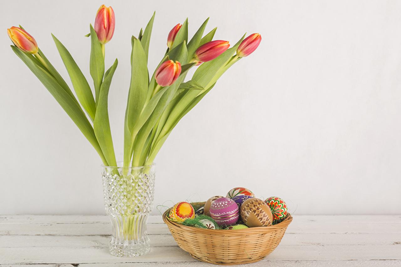 Фотографии Пасха Яйца тюльпан цветок Ваза Праздники яиц яйцо яйцами Тюльпаны Цветы вазы вазе