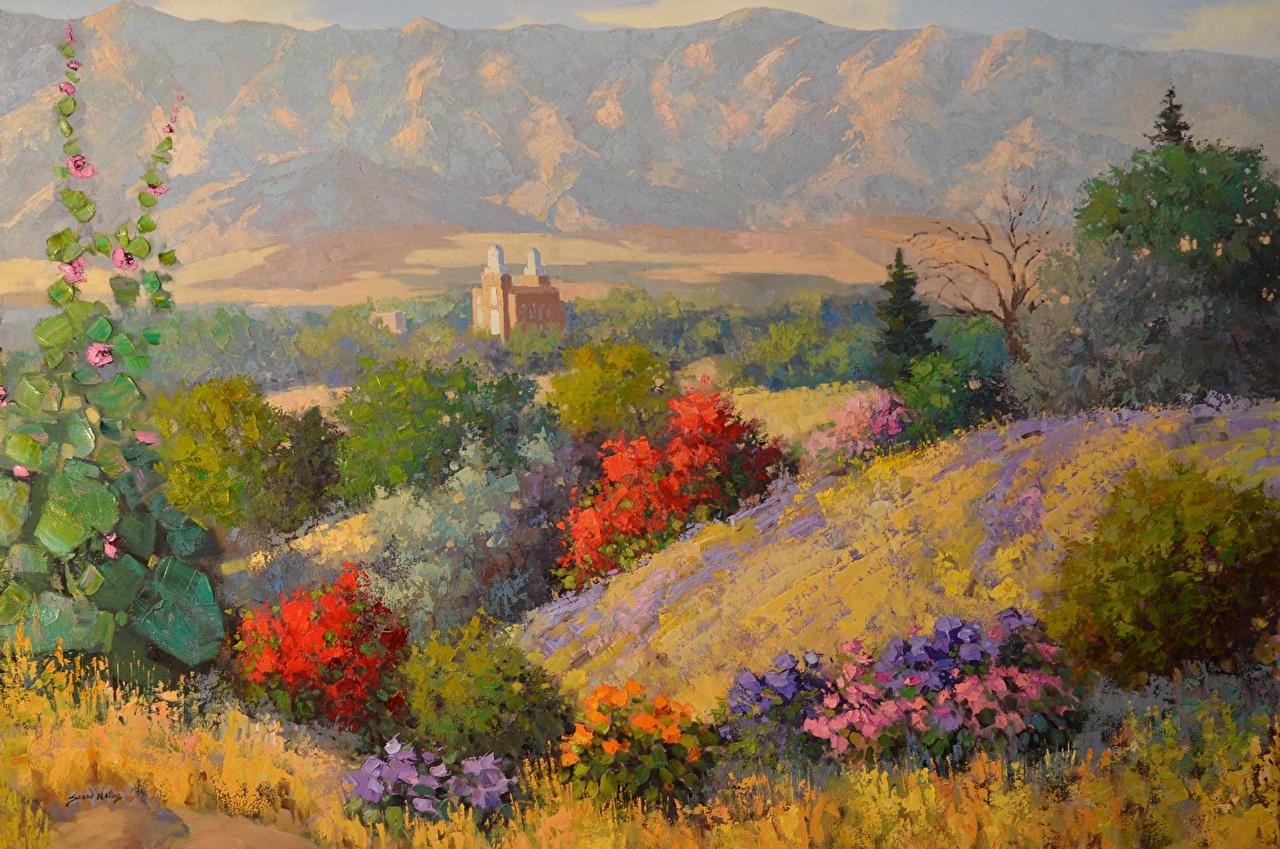 Картинки гора Замки Природа Луга Живопись Горы замок картина