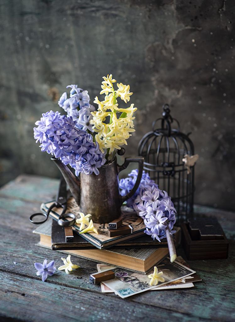 Обои для рабочего стола Цветы вазе книги Гиацинты Доски  для мобильного телефона цветок Ваза вазы Книга