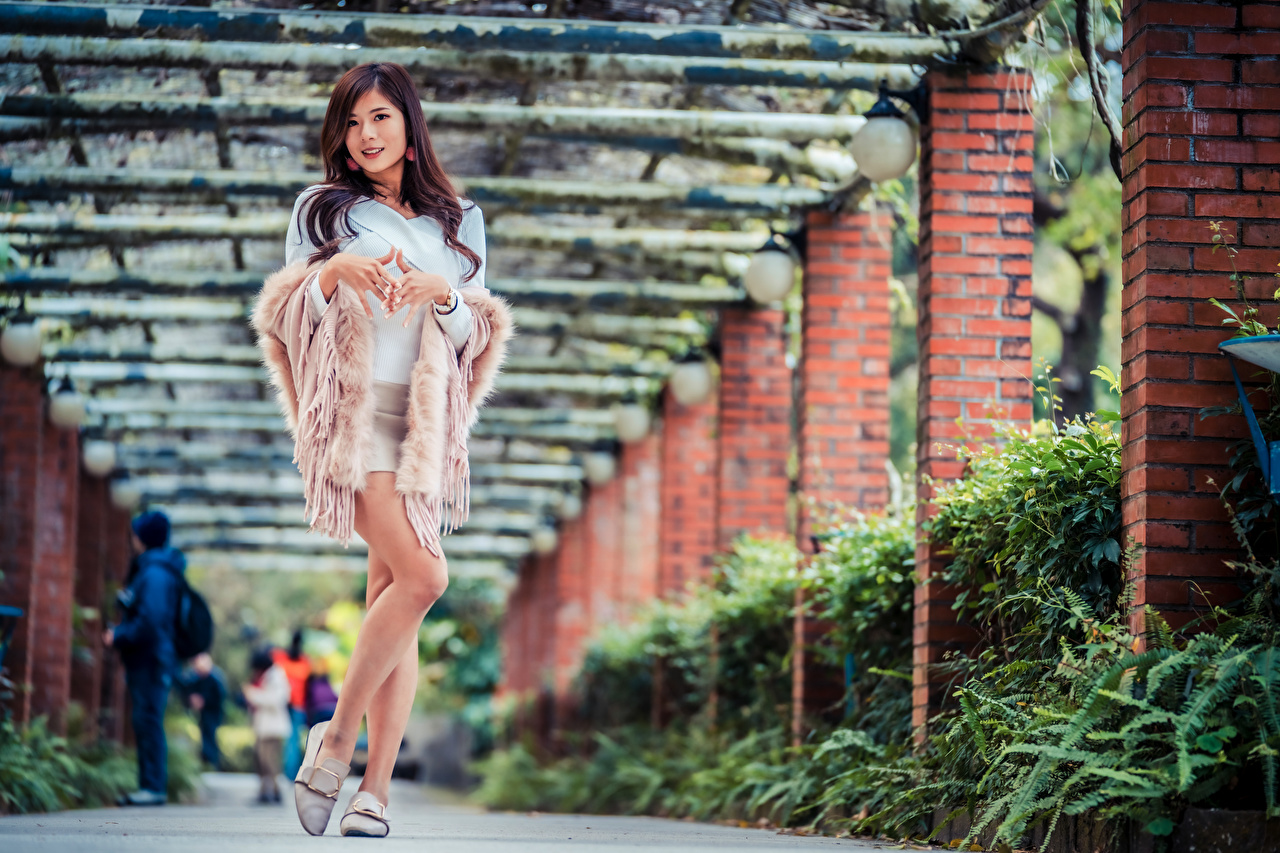 Фотография позирует Девушки Азиаты Взгляд Поза девушка молодая женщина молодые женщины азиатки азиатка смотрит смотрят