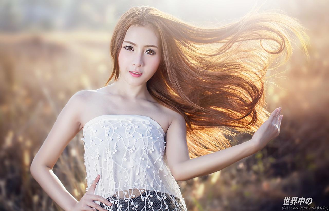 Картинка Шатенка Размытый фон Поза волос Девушки азиатка Руки смотрит шатенки боке позирует Волосы девушка молодые женщины молодая женщина Азиаты азиатки рука Взгляд смотрят