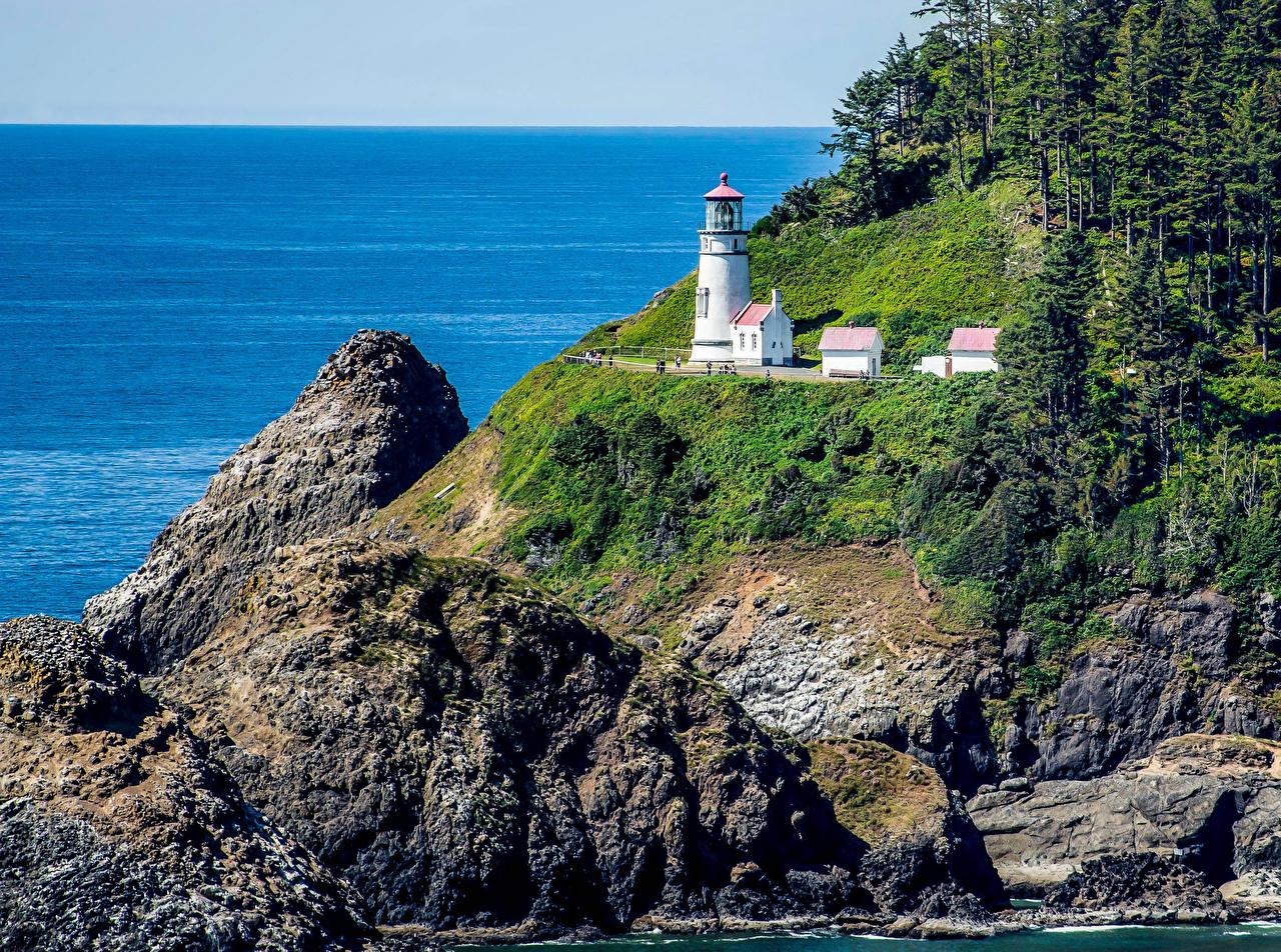 Фото штаты Roosevelt Beach Oregon Ель Утес Маяки Природа Побережье США америка ели маяк скалы скале Скала берег