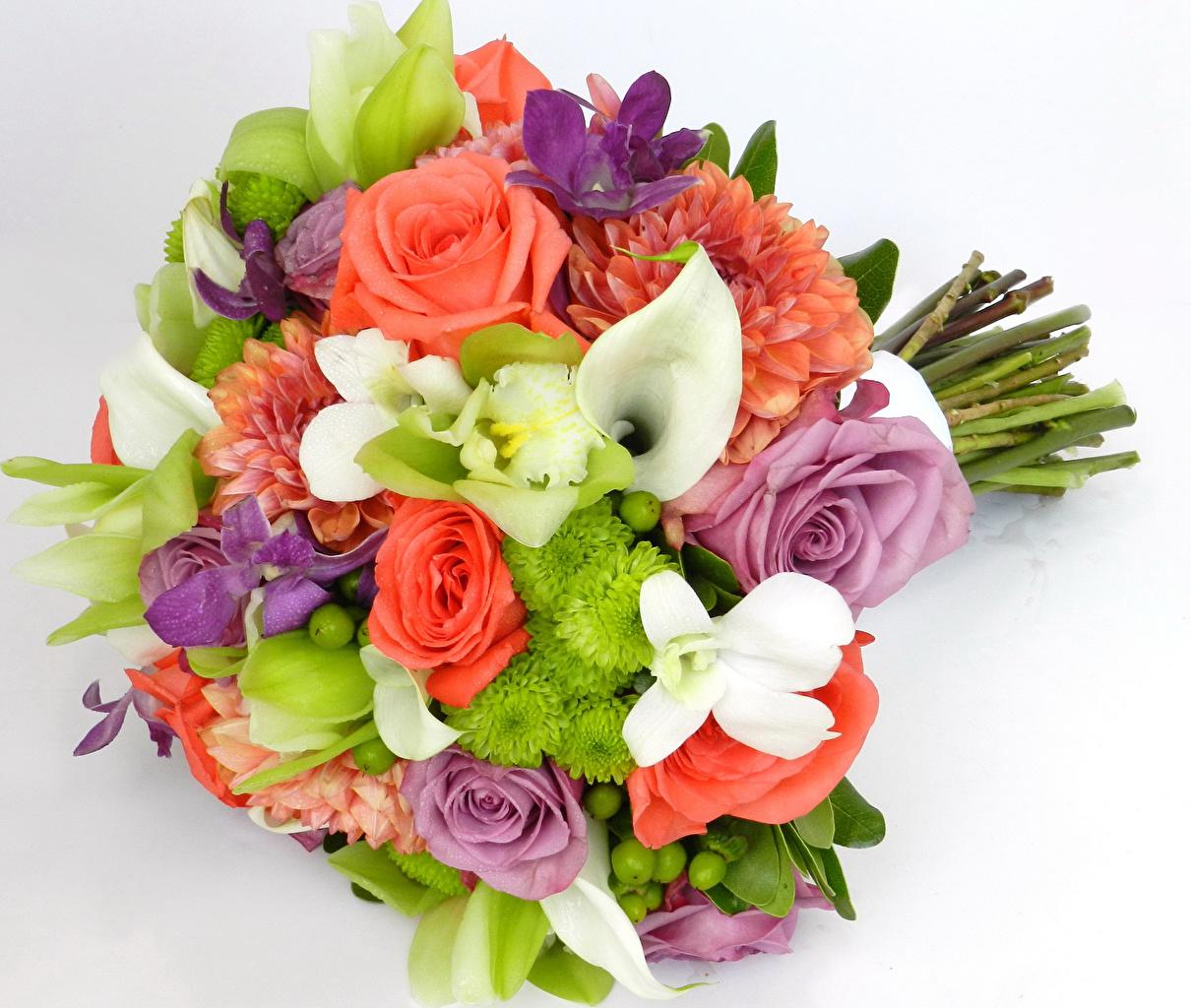 Картинки Букеты роза Каллы Орхидеи Цветы Георгины Хризантемы белом фоне букет Розы орхидея белокрыльник цветок Белый фон белым фоном