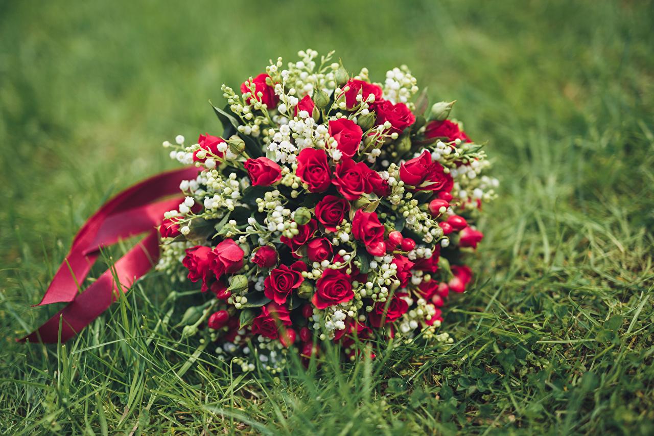 Обои Букеты Розы Цветы Ландыши Трава