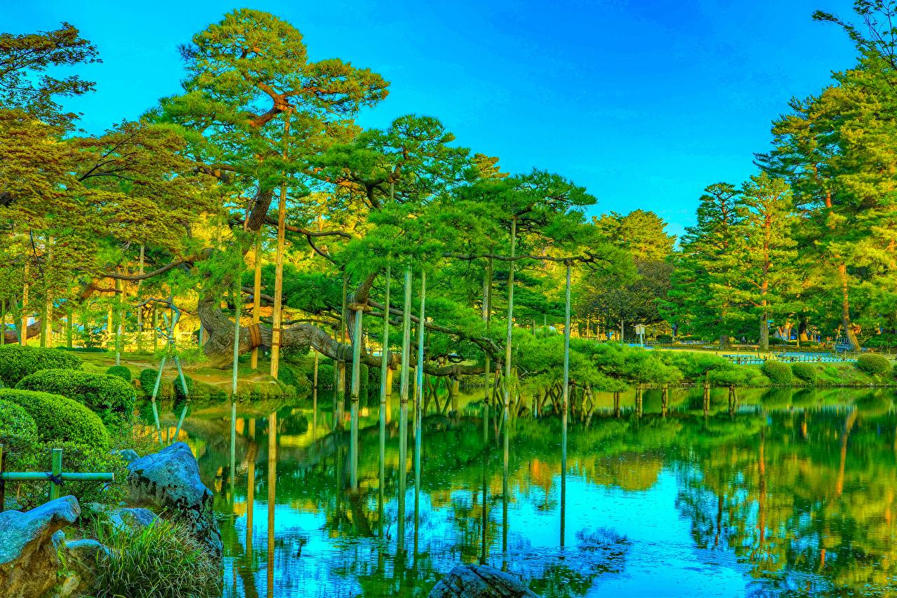Обои для рабочего стола Япония Kanazawa Kenrokuen Garden HDR Природа Пруд Парки отражении Деревья HDRI парк Отражение отражается дерево дерева деревьев