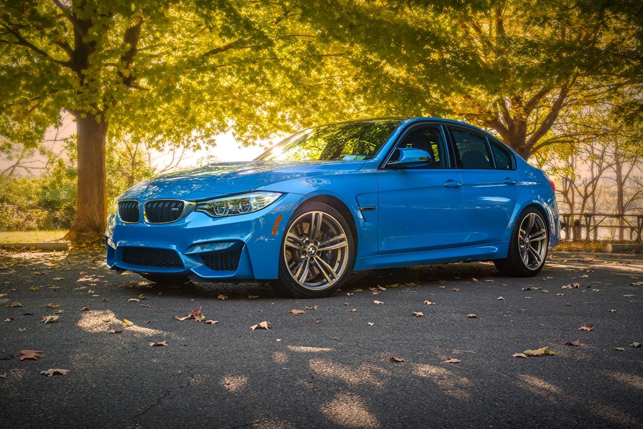 Фотография BMW F80 М3 Седан голубая Автомобили БМВ Голубой голубые голубых авто машины машина автомобиль