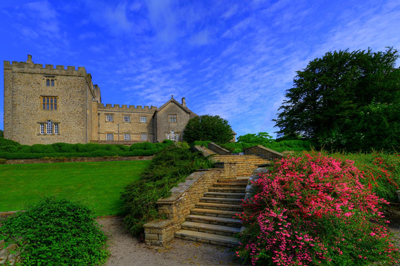 Фото Англия Sizergh Castle and Garden Замки Лестница Газон Кусты Города