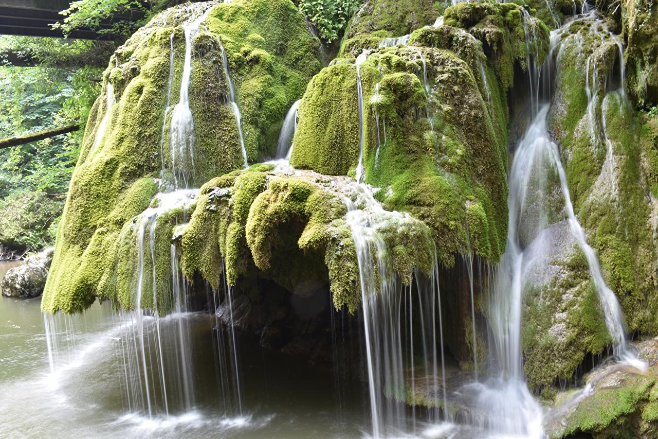 Обои Румыния Cascade Bigar Природа Водопады Мох