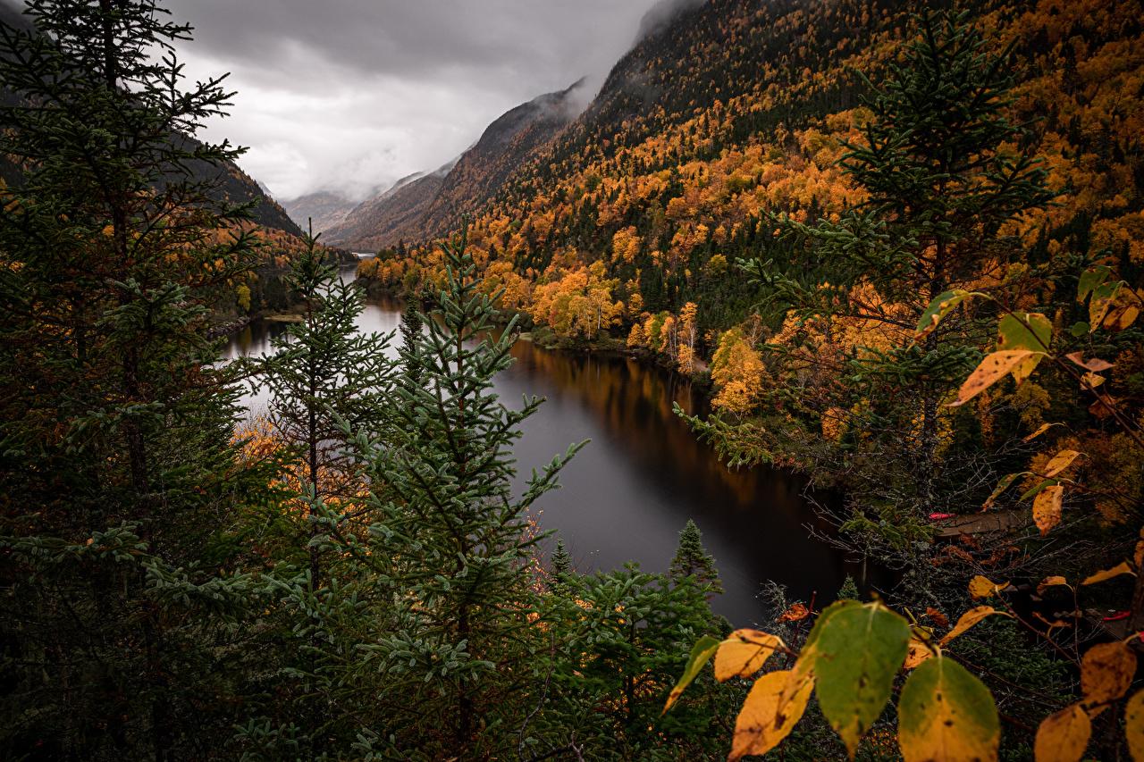 Фото Квебек Канада Parc national des Hautes‑Gorges-de-la-Rivière‑Malbaie гора осенние Природа парк Горы Осень Парки