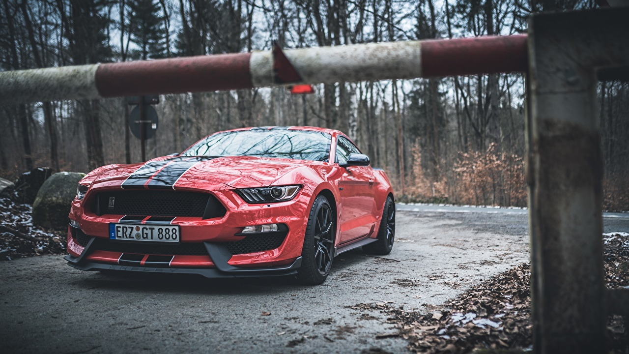Обои для рабочего стола Форд Mustang Shelby GT350 красных Полоски Автомобили Ford красная красные Красный авто машины машина полосатый полосатая автомобиль