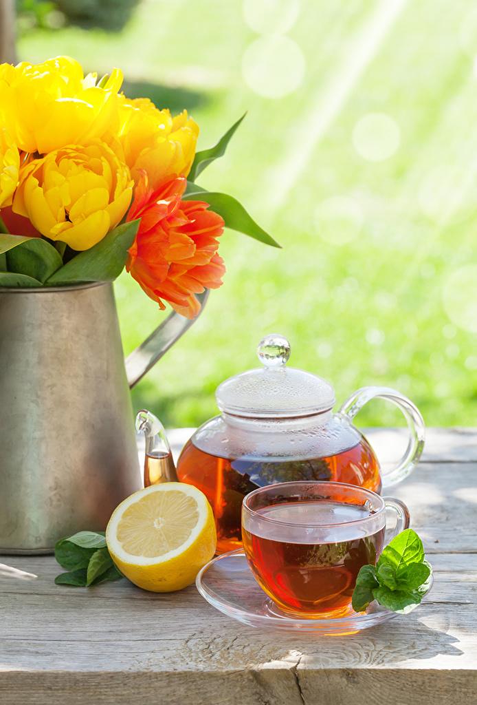 Фотографии Чай тюльпан Лимоны Чайник Еда чашке  для мобильного телефона Тюльпаны Пища Чашка Продукты питания