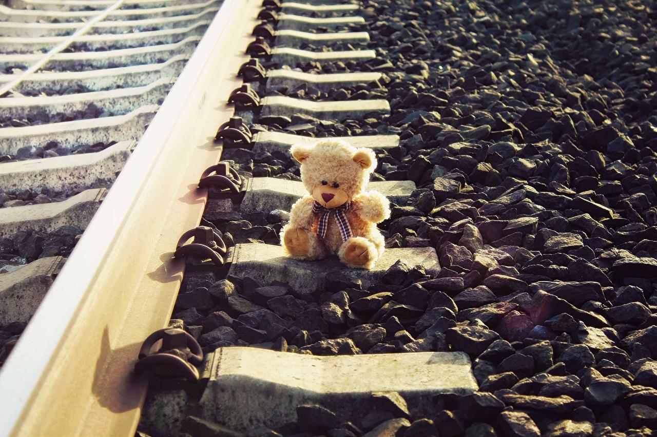 Фото рельсах Мишки Камень Железные дороги Рельсы Плюшевый мишка Камни