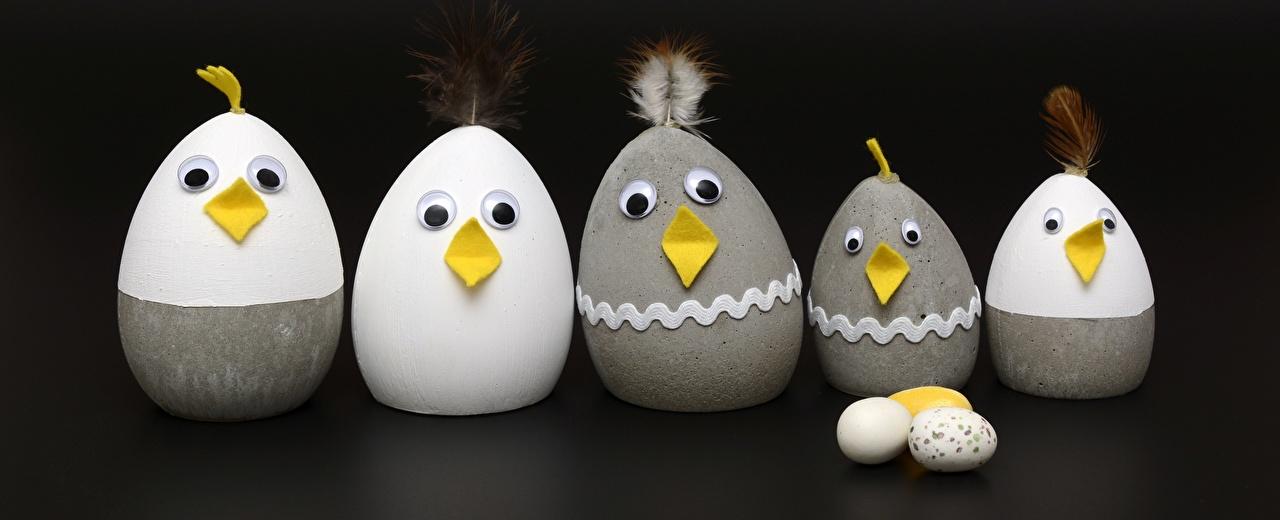 Фотографии Пасха Курица Цыплята яйцо Креатив Птенец курицы яиц Яйца яйцами креативные оригинальные