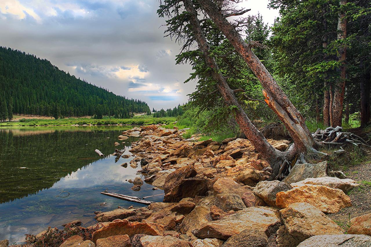 Фото Природа Леса Озеро Камни лес Камень
