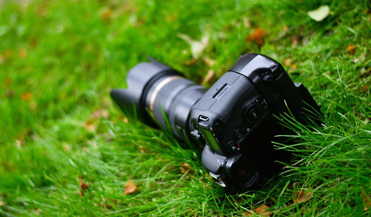 Фотография фотокамера боке траве вблизи Фотоаппарат Размытый фон Трава Крупным планом