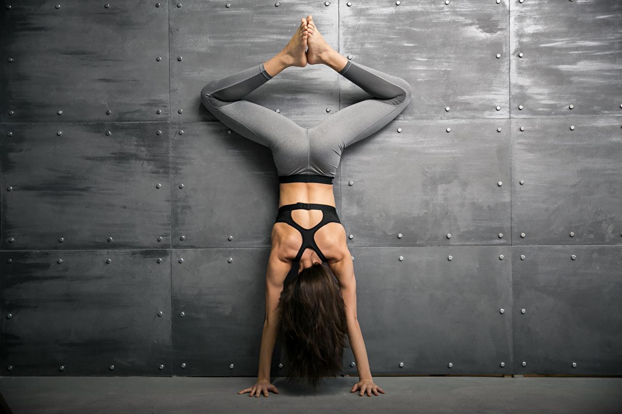 Фотография шатенки тренируется Спина Фитнес спортивные молодые женщины Ноги Руки стены Шатенка Тренировка физическое упражнение спины Спорт девушка Девушки спортивный спортивная молодая женщина ног рука стене Стена стенка