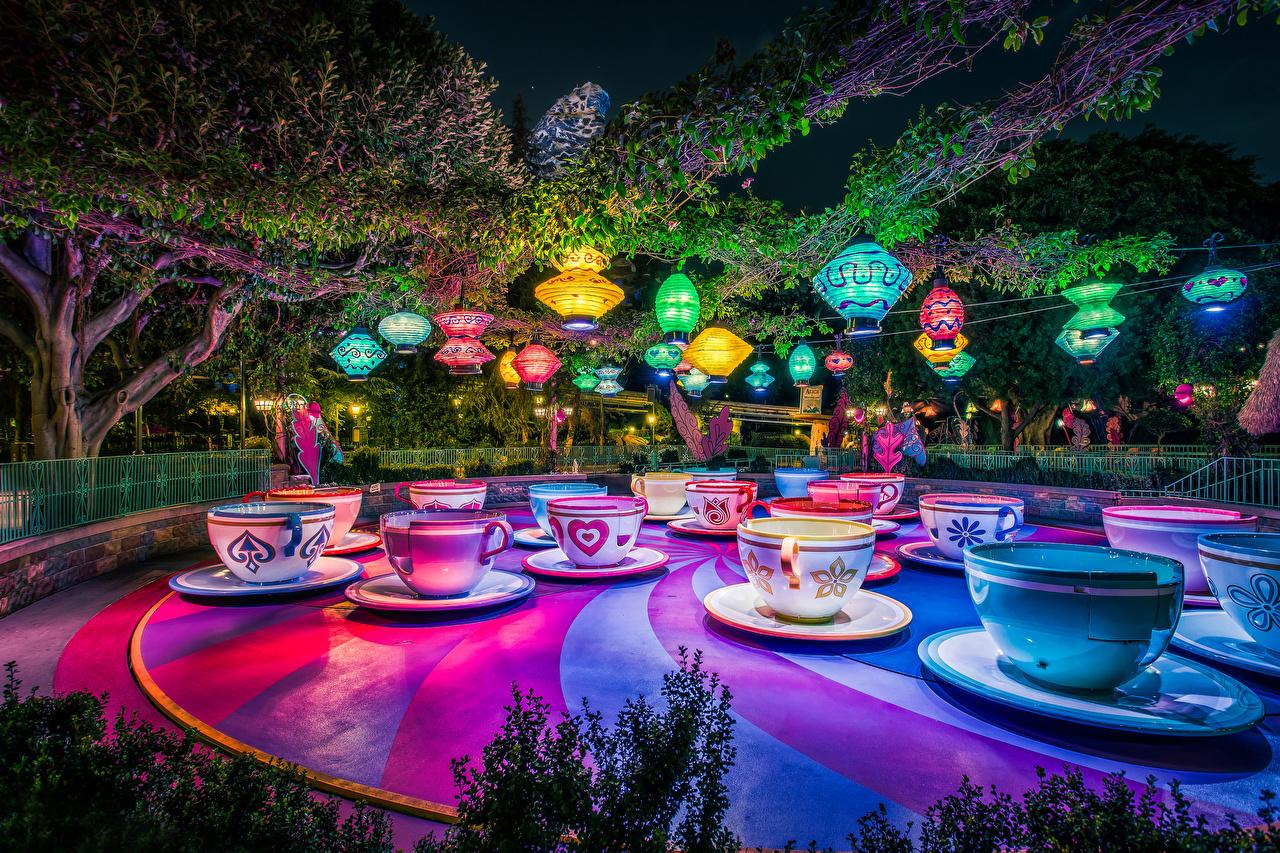 Фото Анахайм Калифорния Диснейленд штаты Природа Парки Чашка Ночные Дизайн США Ночь