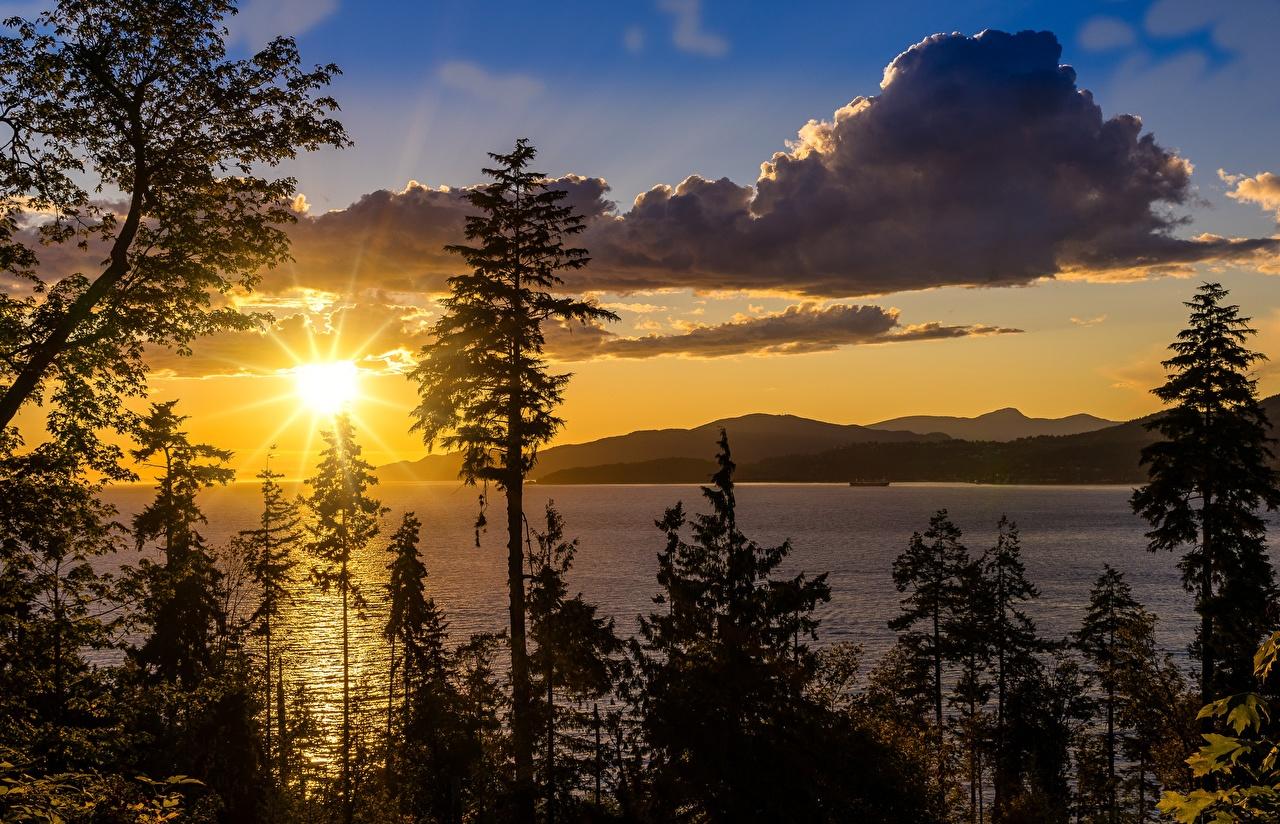 Фото Калифорния США lake Tahoe Солнце Природа Озеро Рассветы и закаты дерево калифорнии штаты америка солнца рассвет и закат дерева Деревья деревьев