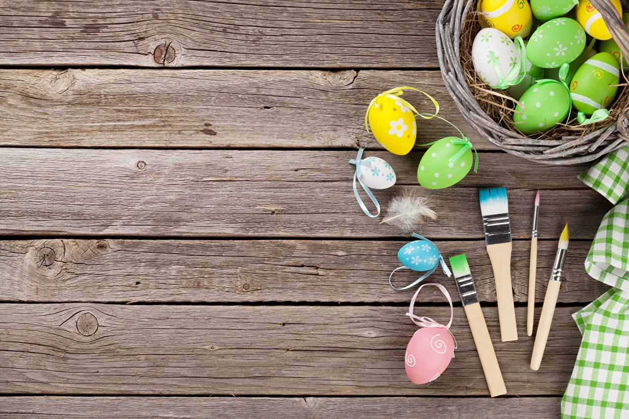 Фото Пасха яйцо Кисть Перья Доски яиц Яйца яйцами Кисточки