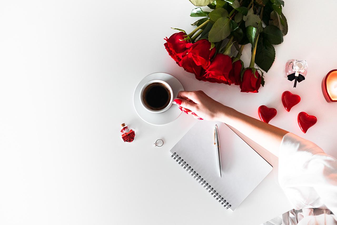 Картинка День святого Валентина сердца Шариковая ручка Блокнот букет Розы Кофе Цветы Руки чашке День всех влюблённых серце Сердце сердечко Букеты роза цветок рука Чашка