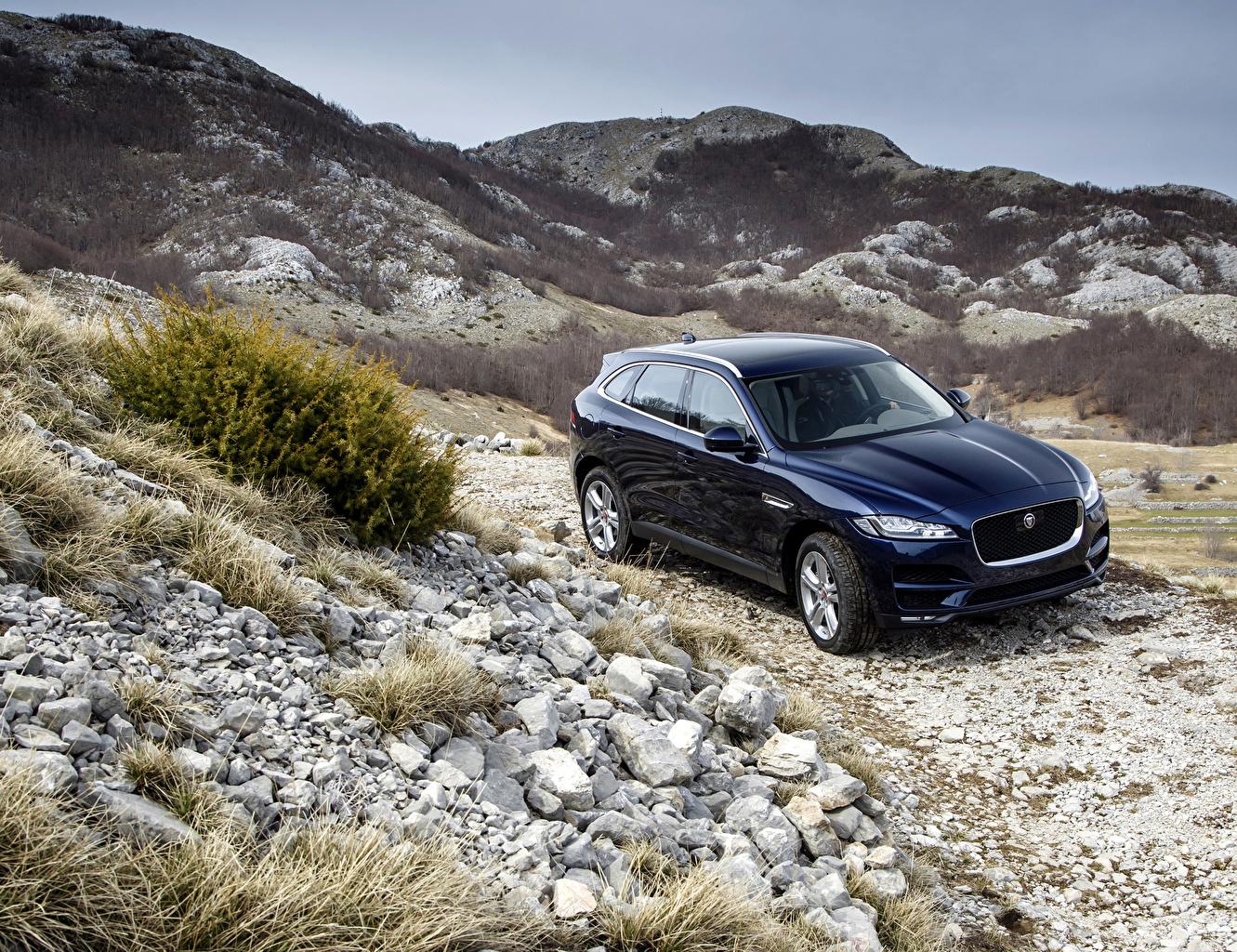 Фото Jaguar 2016 F-Pace Portfolio синяя Металлик Автомобили Ягуар синих синие Синий авто машина машины автомобиль