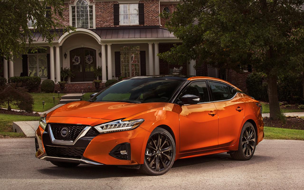 Фото Nissan 2019 Maxima SR оранжевые Металлик Автомобили Ниссан оранжевая Оранжевый оранжевых авто машины машина автомобиль