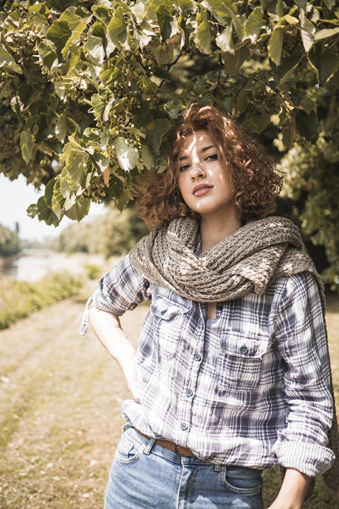Фото Шатенка шарфе Девушки рубашки смотрят  для мобильного телефона шатенки Шарф шарфом рубашке девушка Рубашка молодые женщины молодая женщина Взгляд смотрит