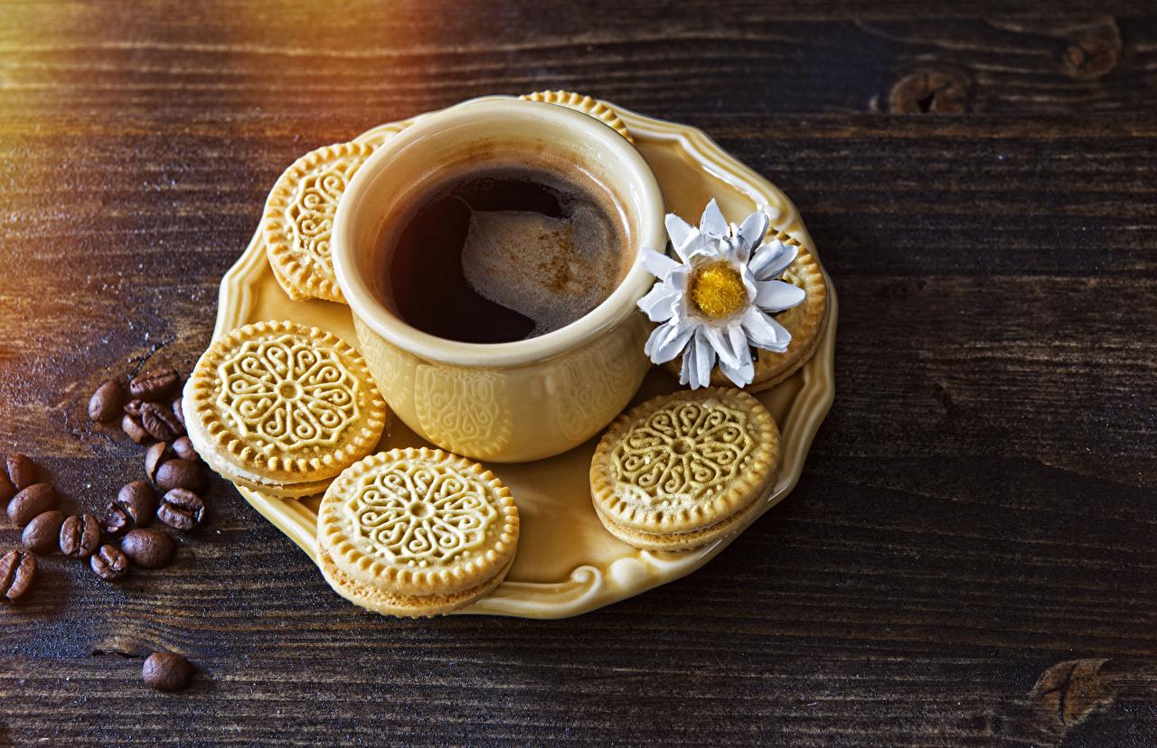 Фотография Кофе Зерна Чашка Печенье Продукты питания Доски Еда Пища