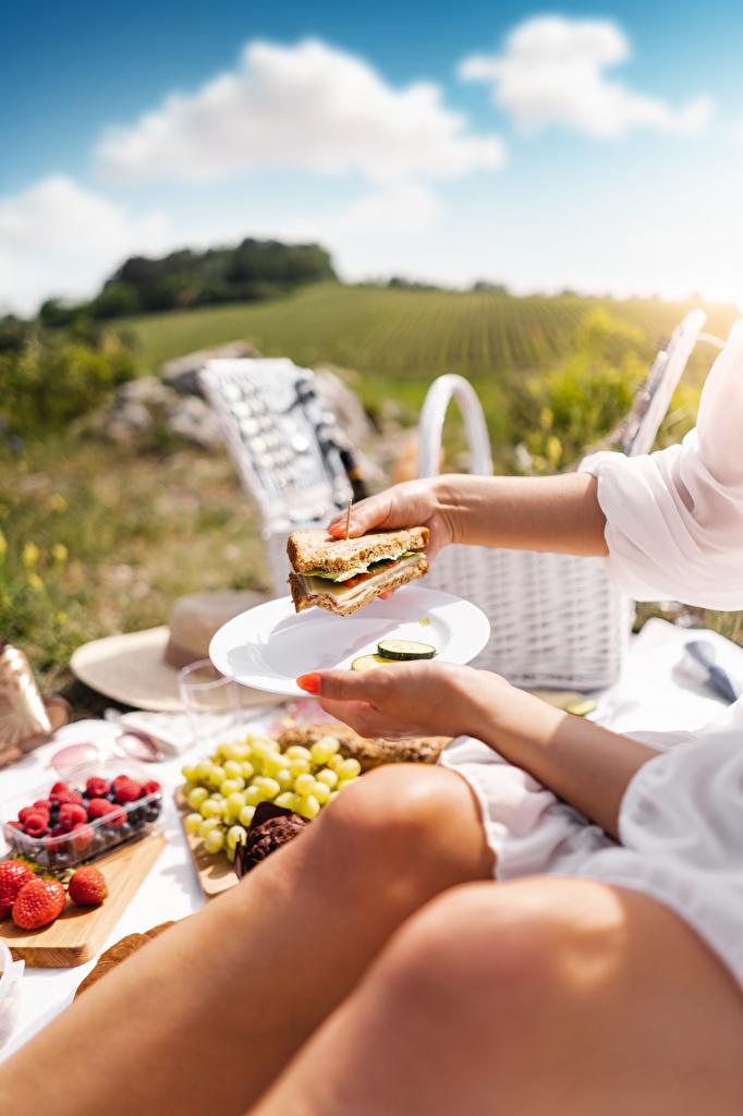 Фотография пикнике Размытый фон Сэндвич бутерброд Руки Тарелка Продукты питания  для мобильного телефона Пикник боке Бутерброды Еда Пища рука тарелке
